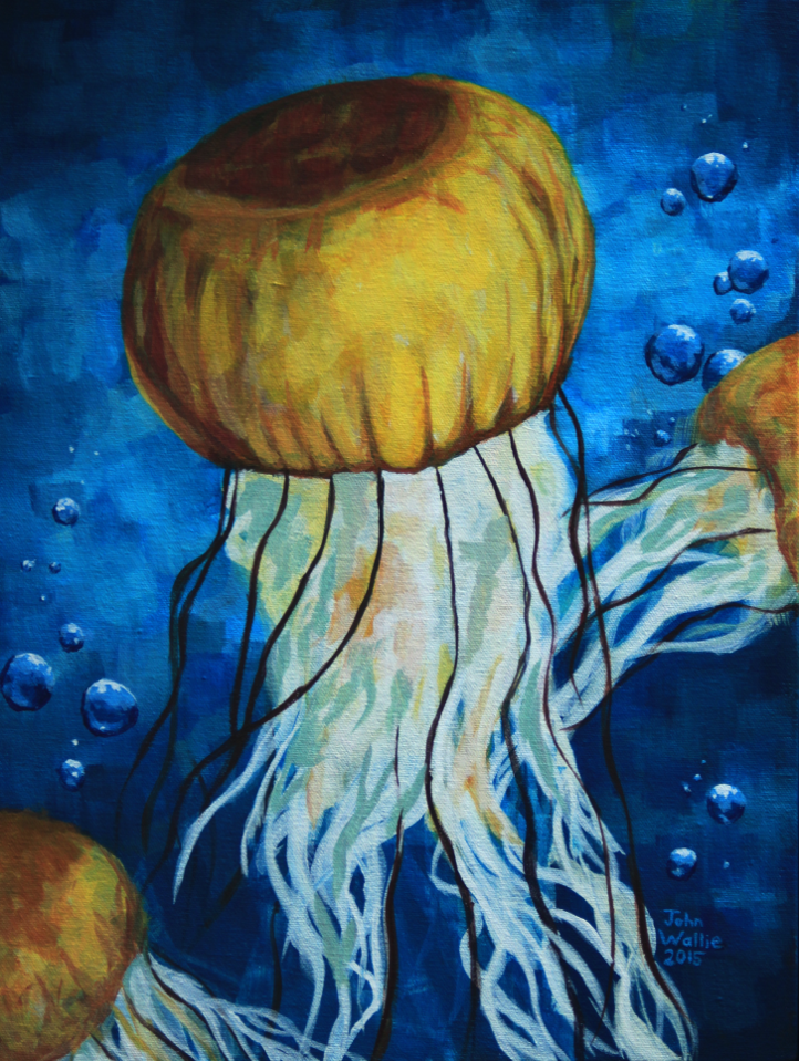 bright yellow jellyfish