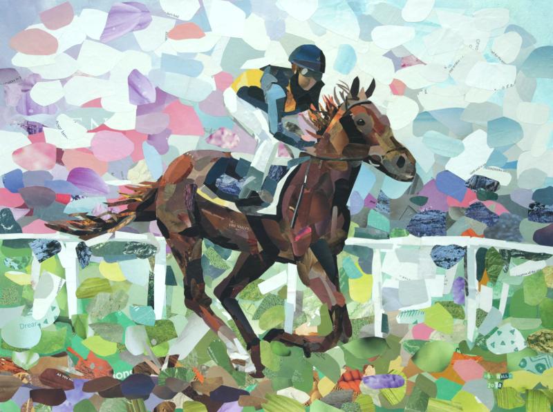 jw_racehorse_800