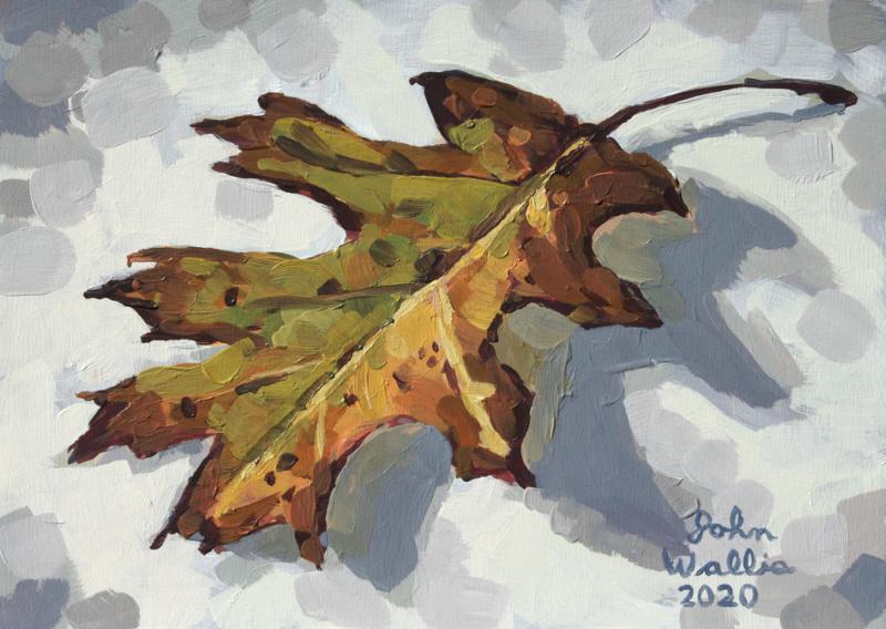 oak_leafjpg800